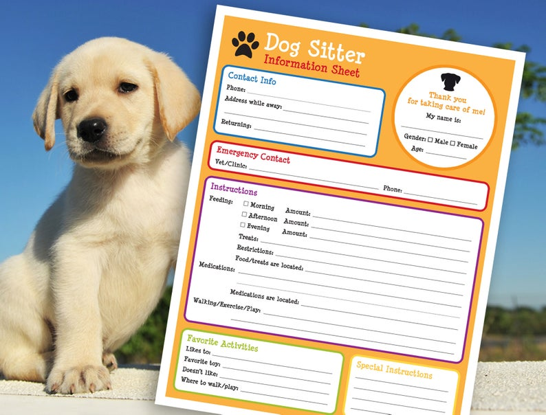 pet sitter contact info wags to wiskers.jpg