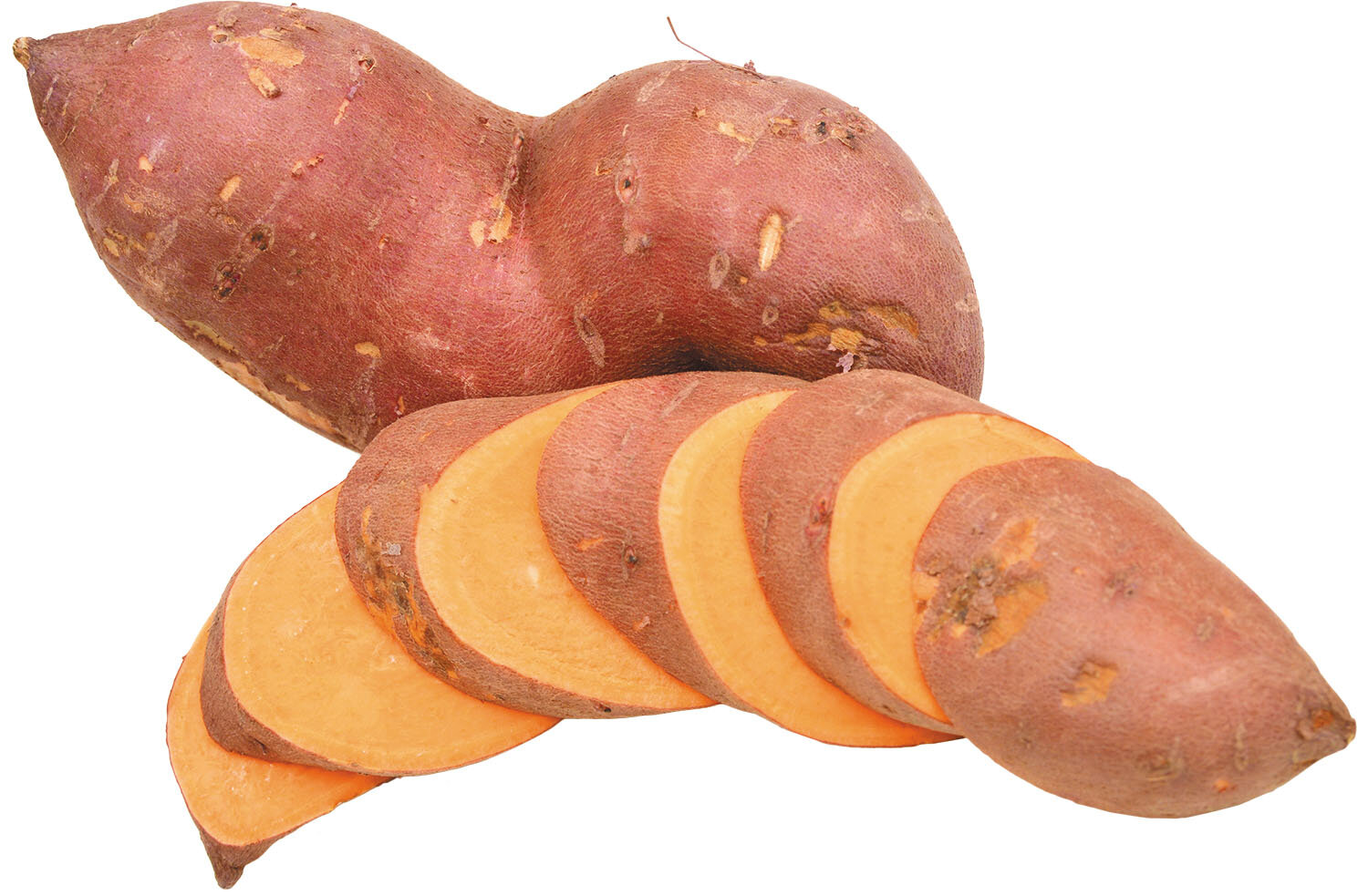 Even raw, sweet potatoes are great snacks for dogs. At Wags to Wiskers we get them from a local southeast Michigan farmer! Ask about them.