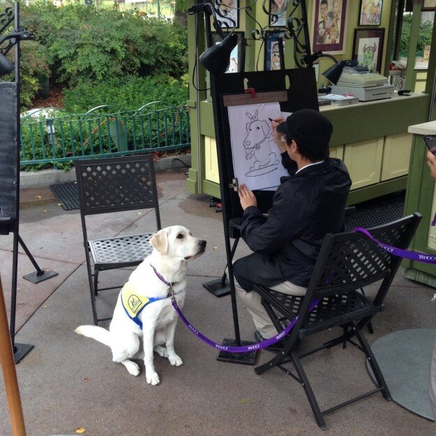 service dog 7.jpg