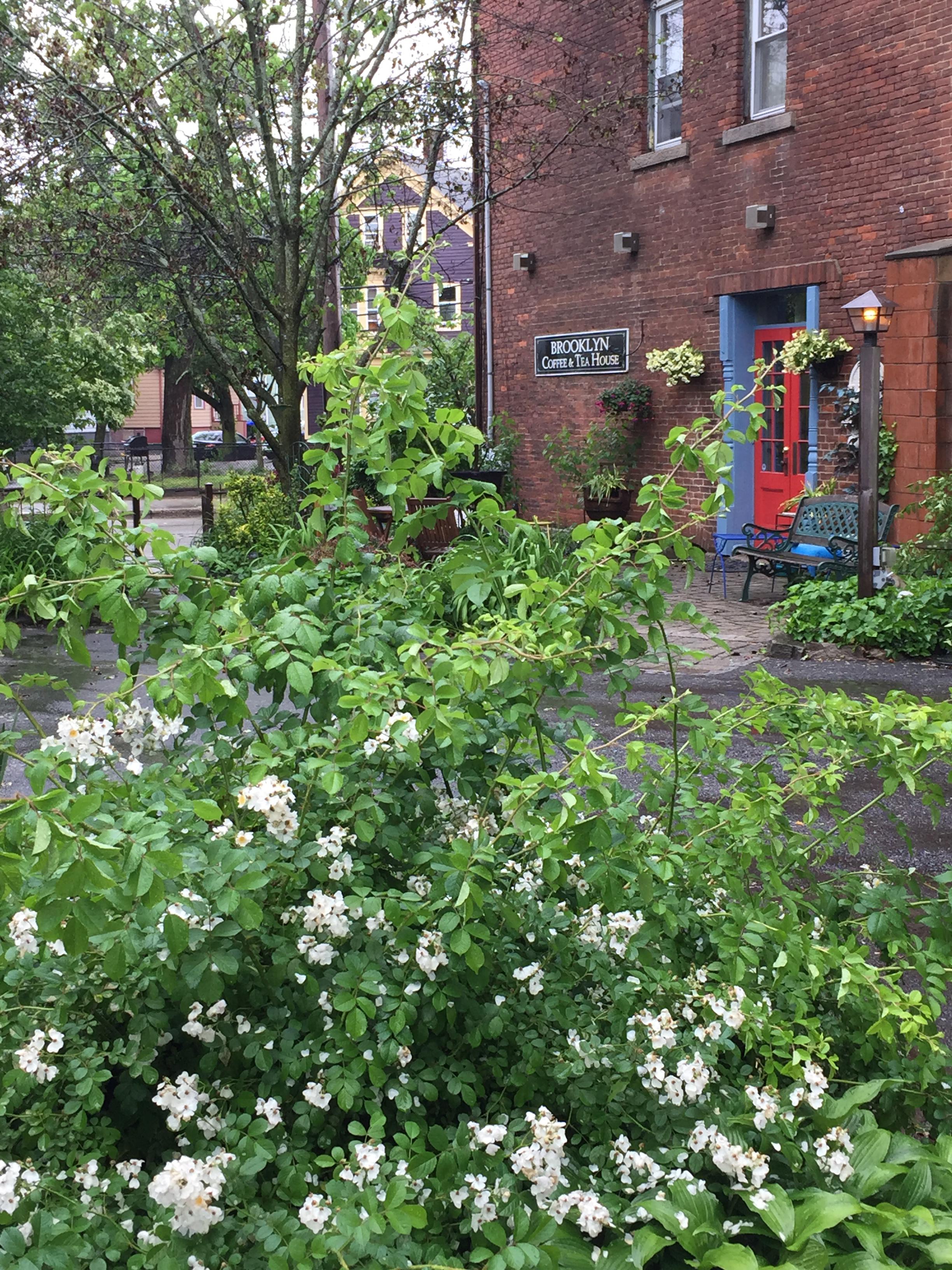 Spring_CoffeeHouse_SideDoor.jpg