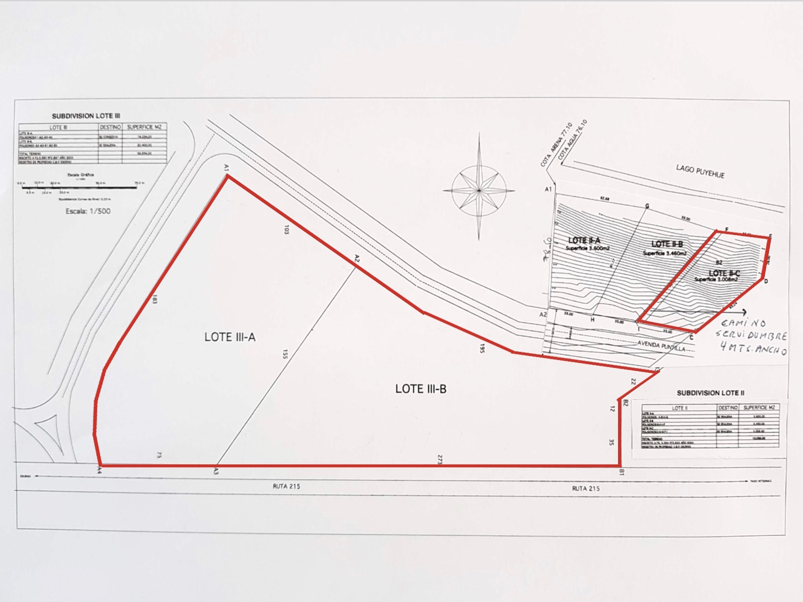 Survey Map.jpg