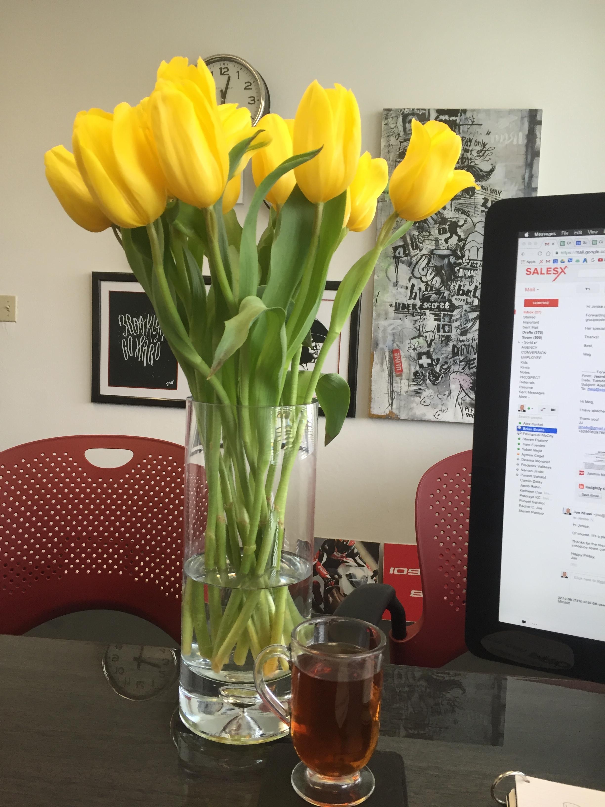 office-flowers-belmont.JPG