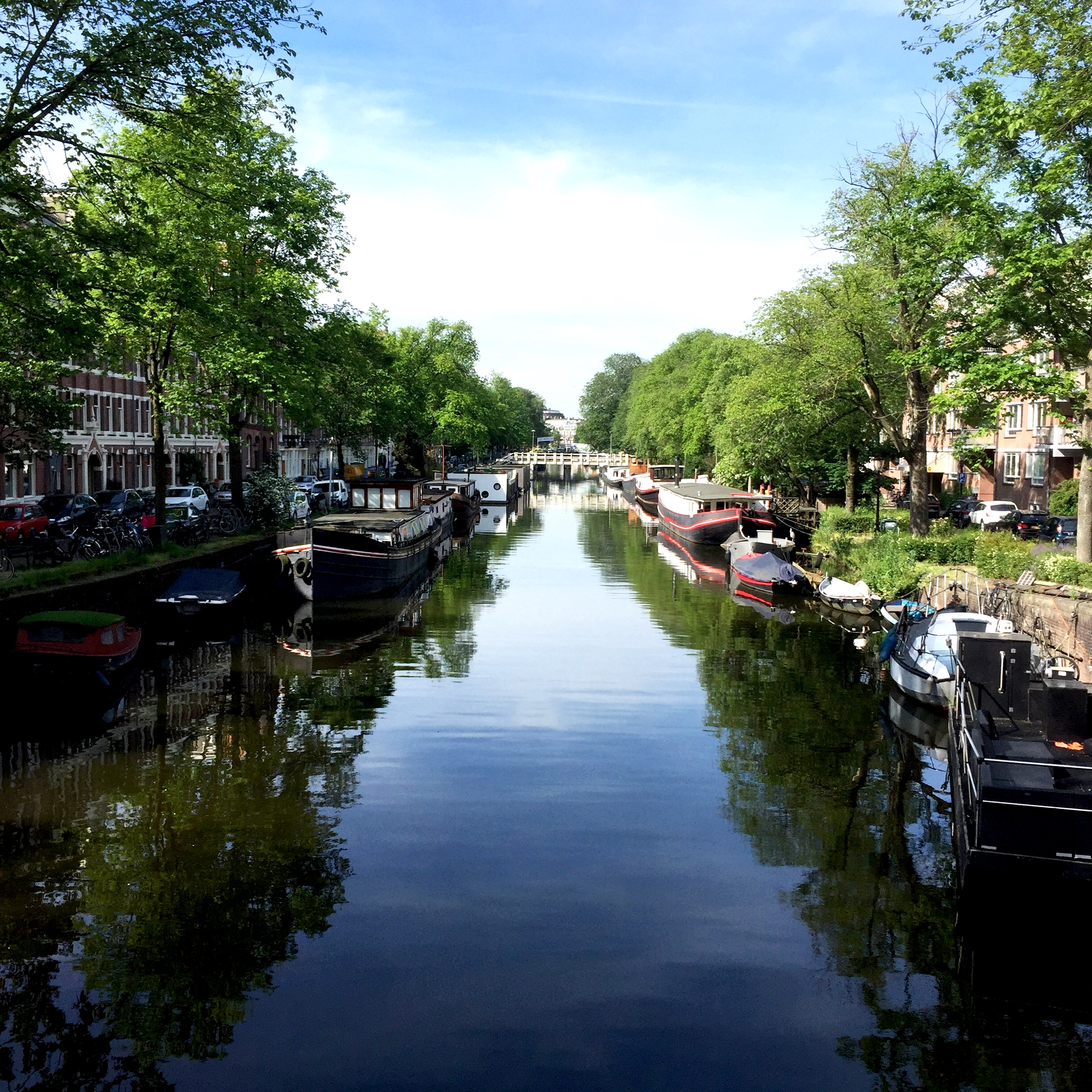 Finding Space in Amsterdam - MicroLife Institute Abroad
