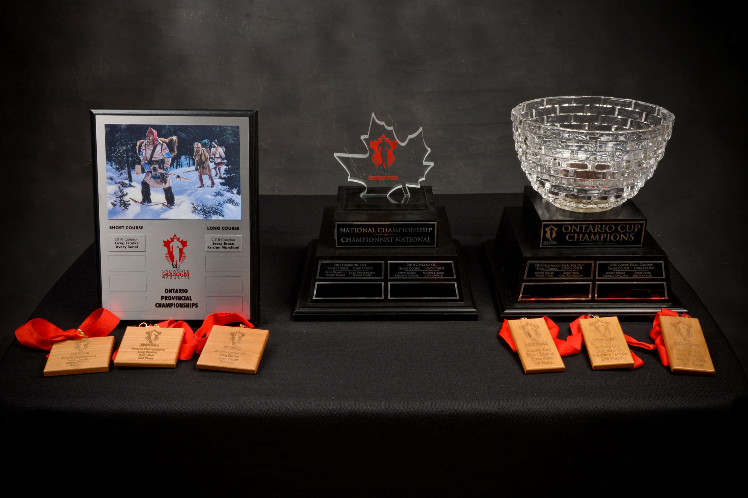 Championship Trophies Grouped together.jpg