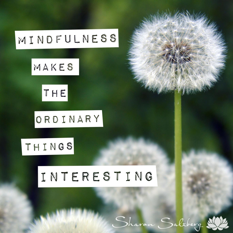 @SharonSalzberg #RealHappinessChallenge Day 8: Walking Meditation