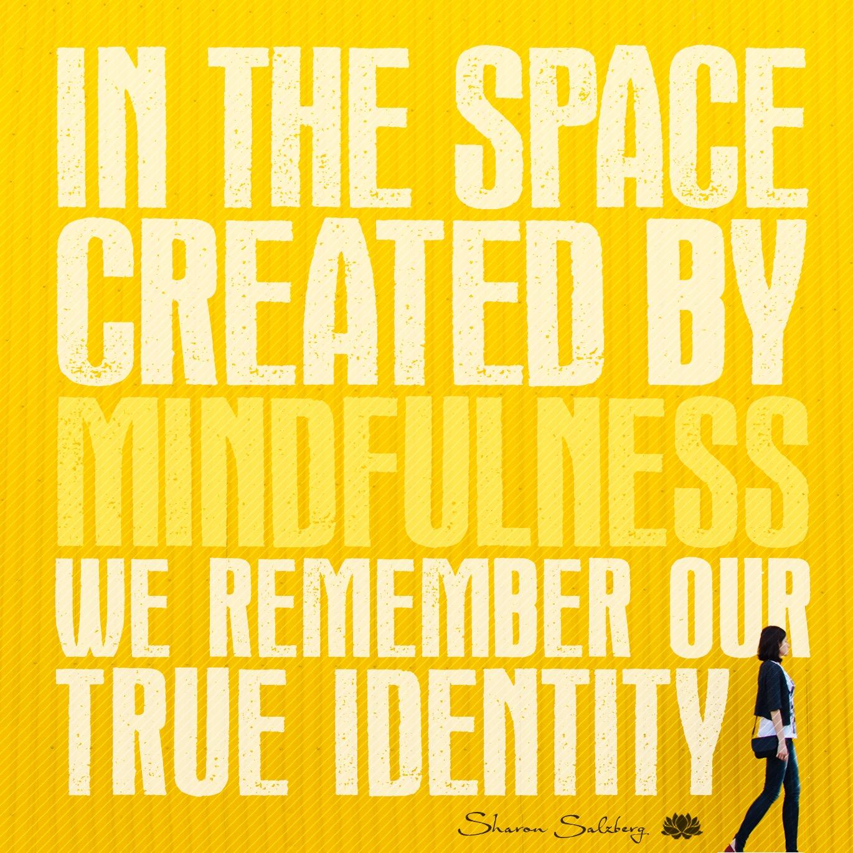 @SharonSalzberg #RealHappinessChallenge Day 16: Meditation on Positive Emotions