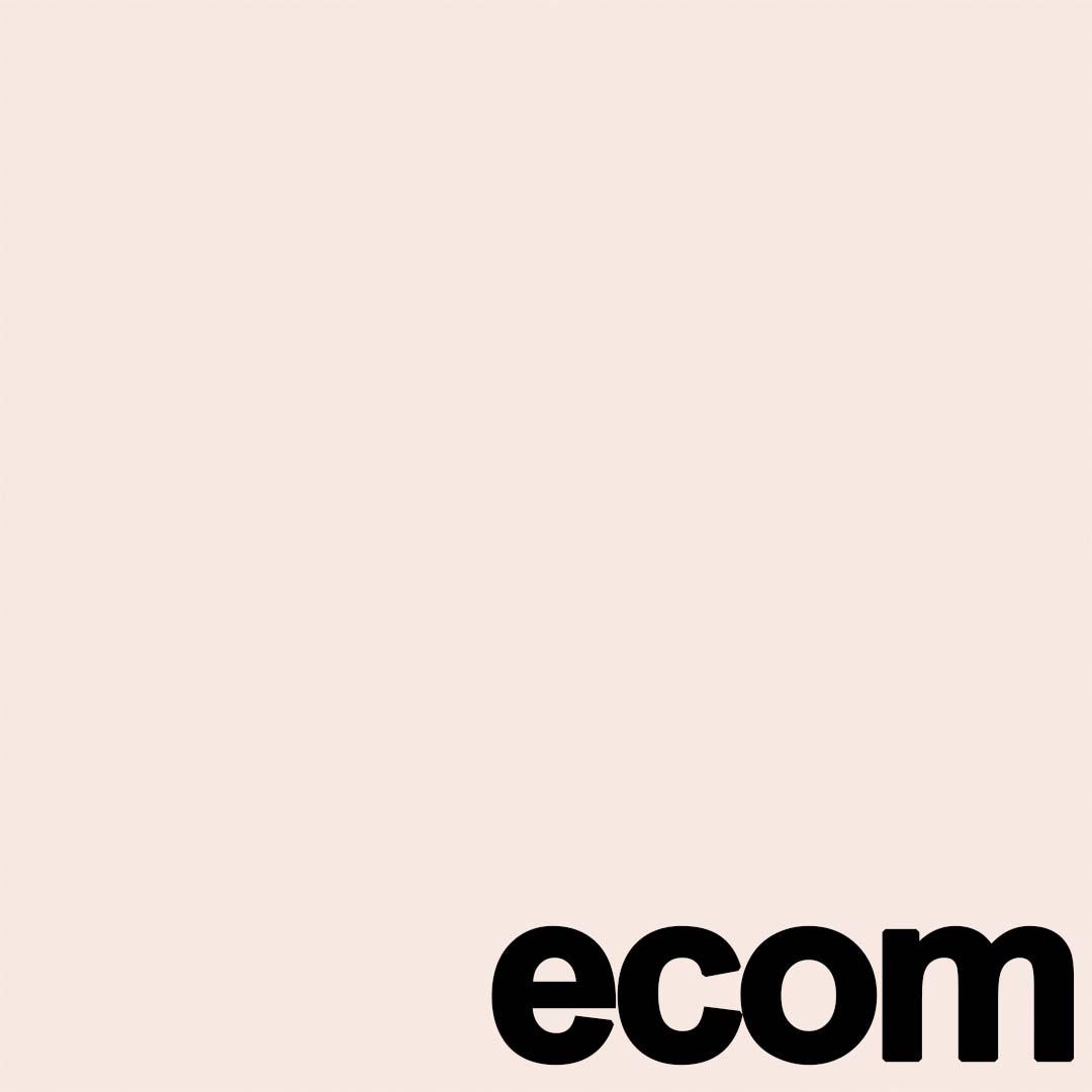 ecom.jpg