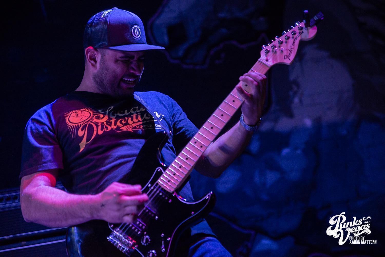 WH_PunksinVegas_Guitar.jpg