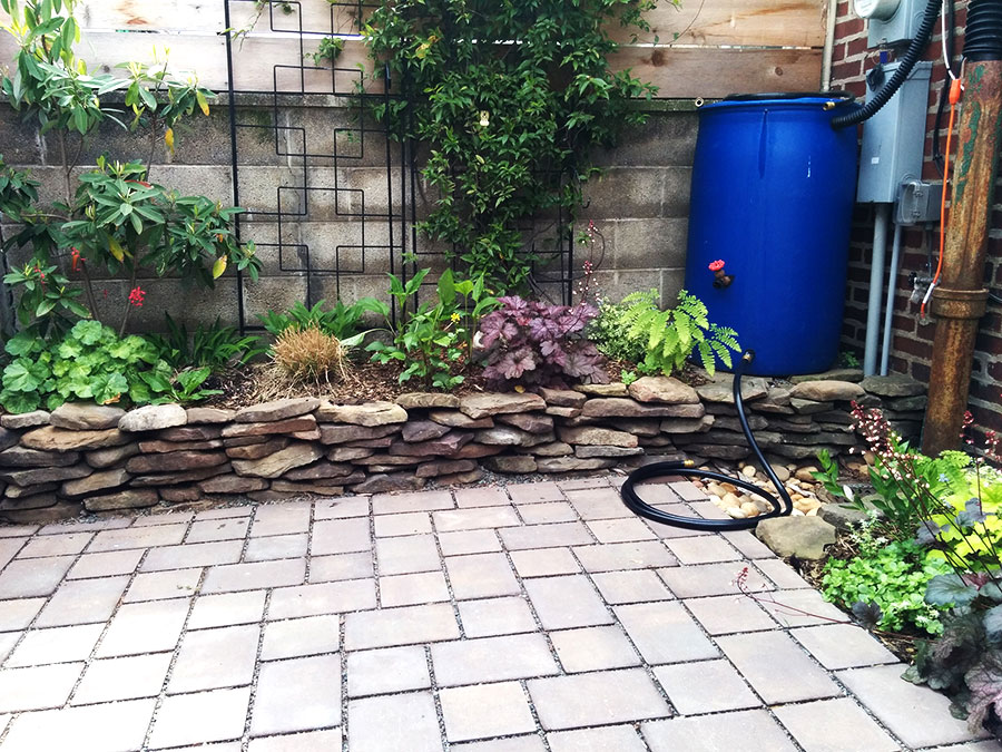 Rain Barrel and Permeable Pavers