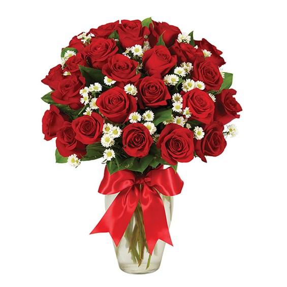 dozens of roses.jpg