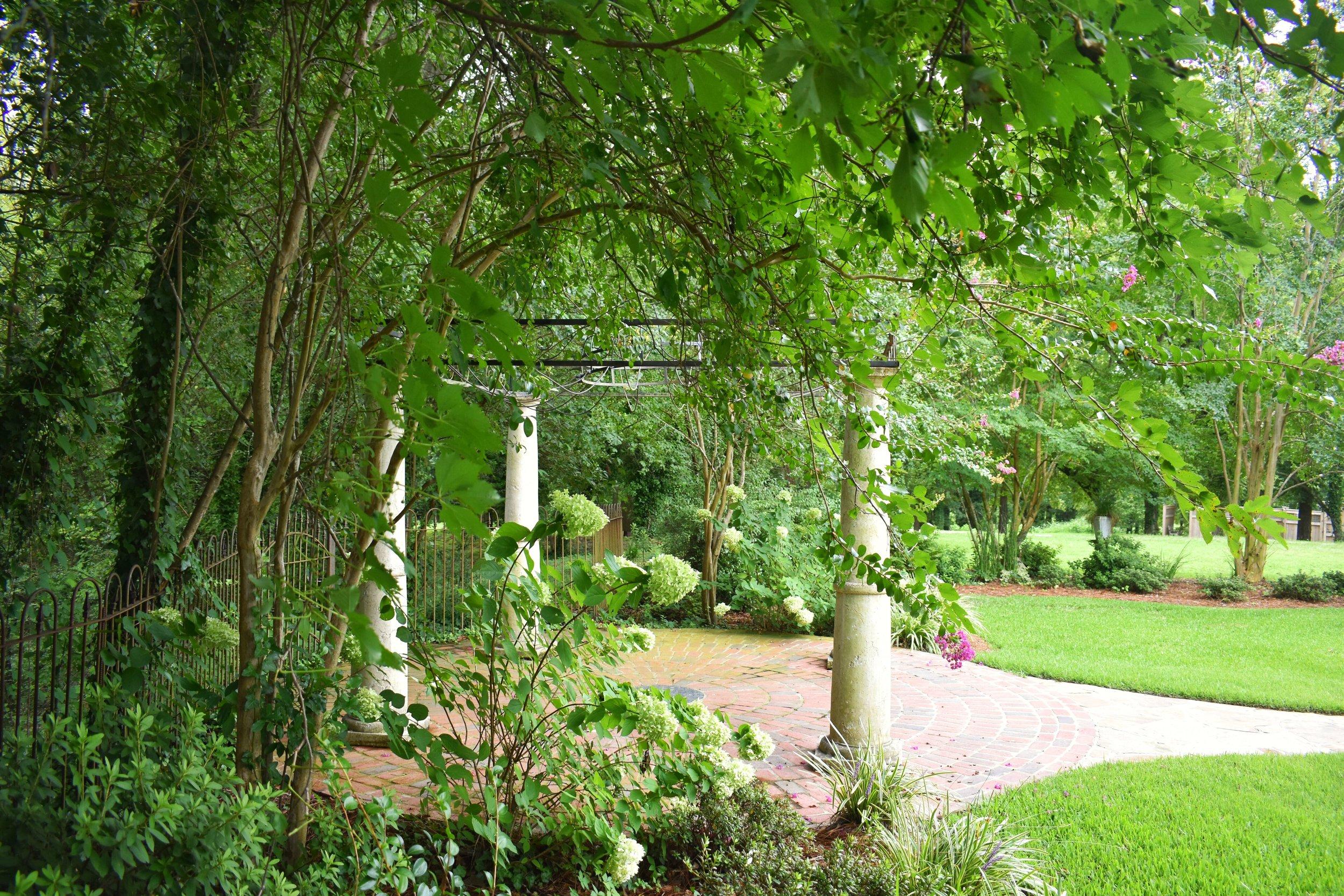 garden 5.jpeg