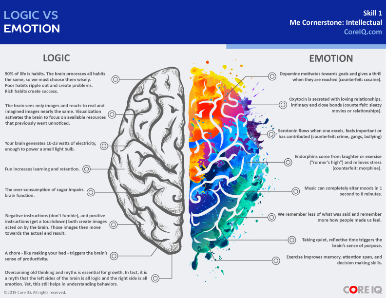 Logic vs Emotion