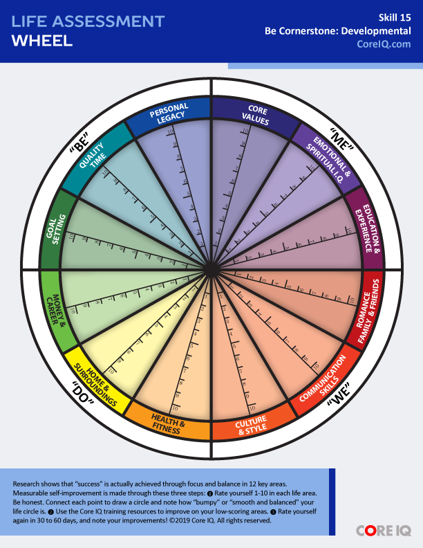 Life Assessment Wheel