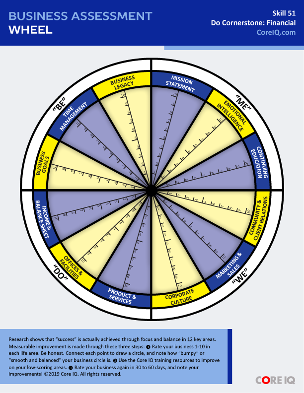 Skill 51: Business Assessment Wheel