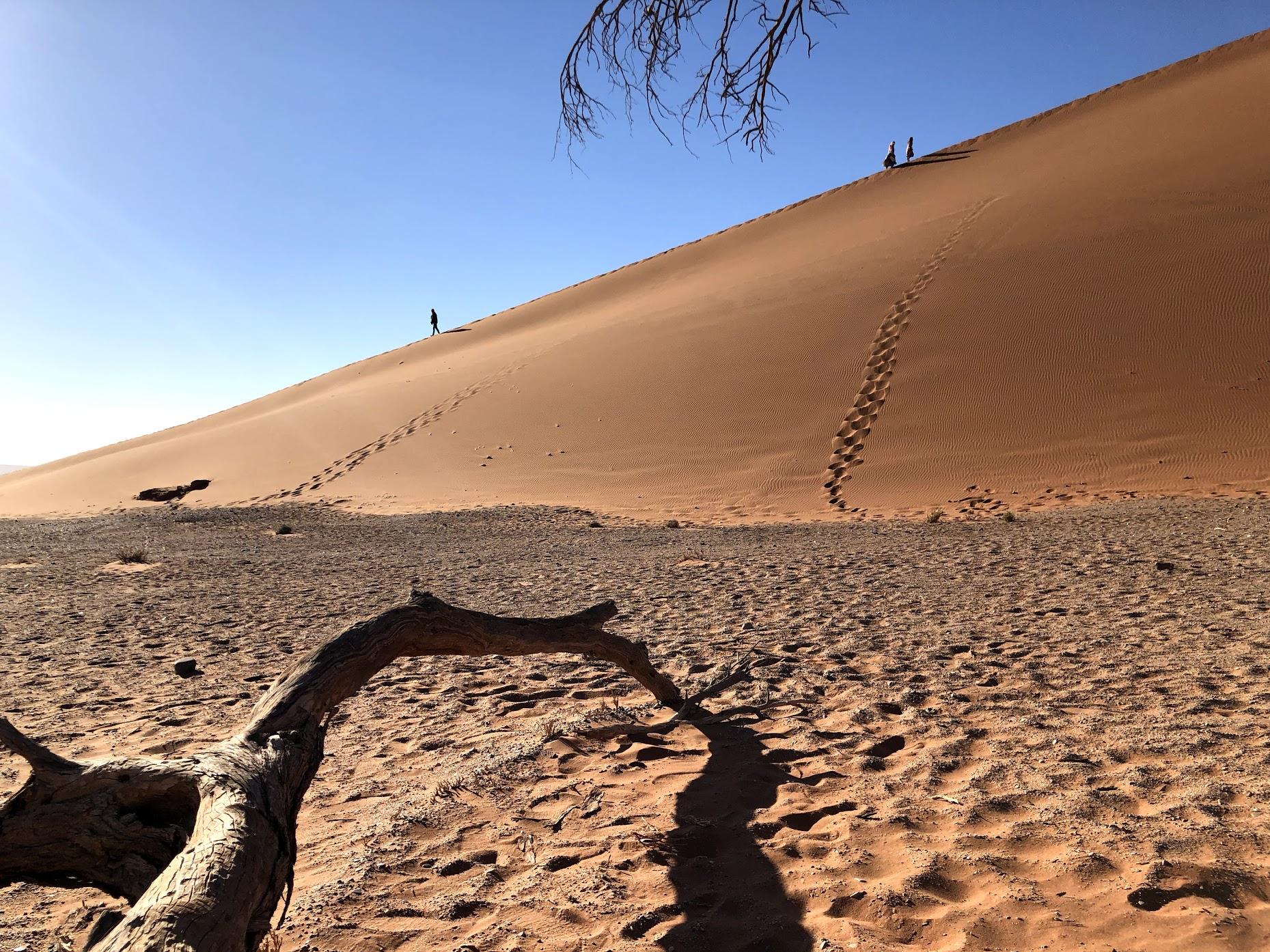 Sand dunes at Sossusvlei, Namibia (2018)