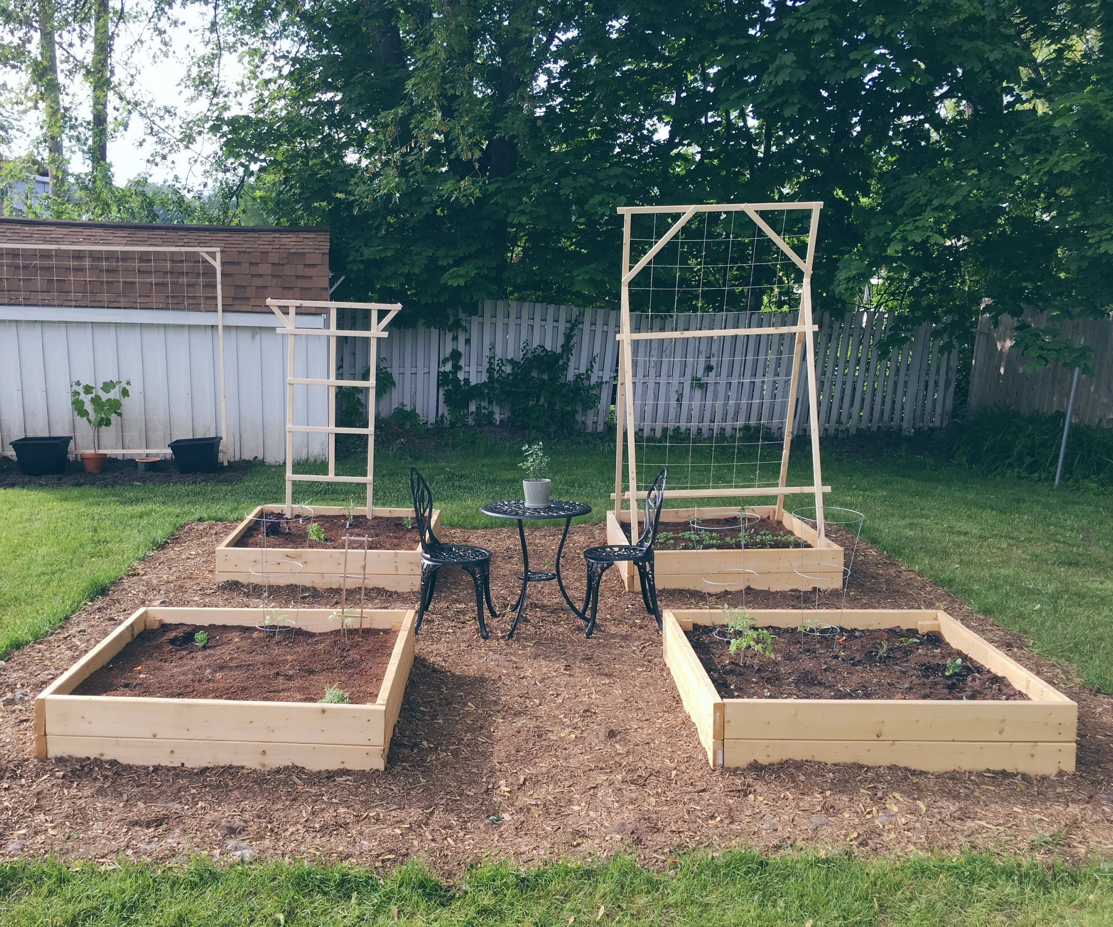 The Work of Waiting - Khouria Faith reflects on how tending a vegetable garden is helping her learn watchfulness, new strategies for managing worries and fear, and how to face frustrations in a more productive way.