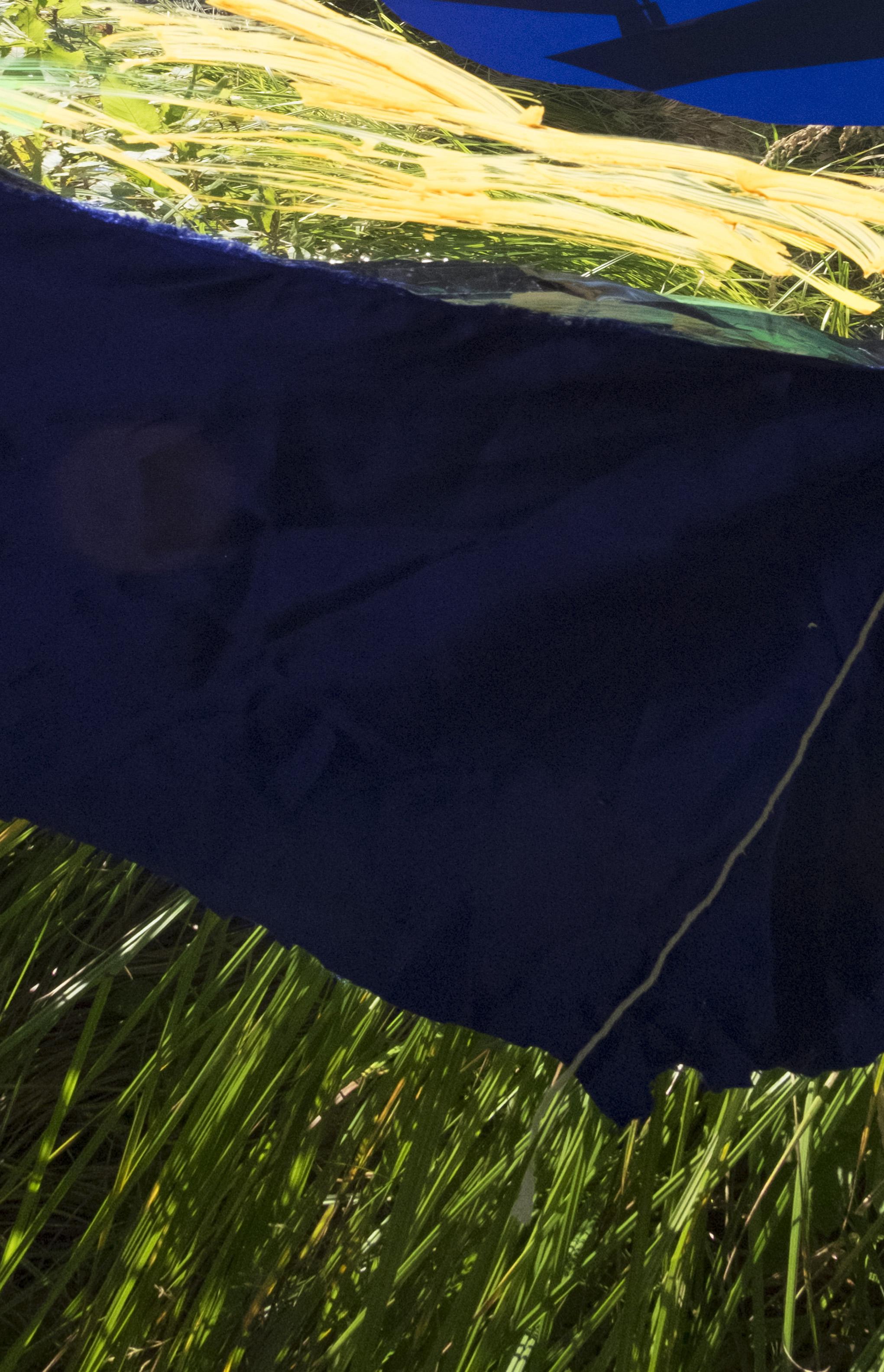 09.08.16 Tofte Lake (Grass)