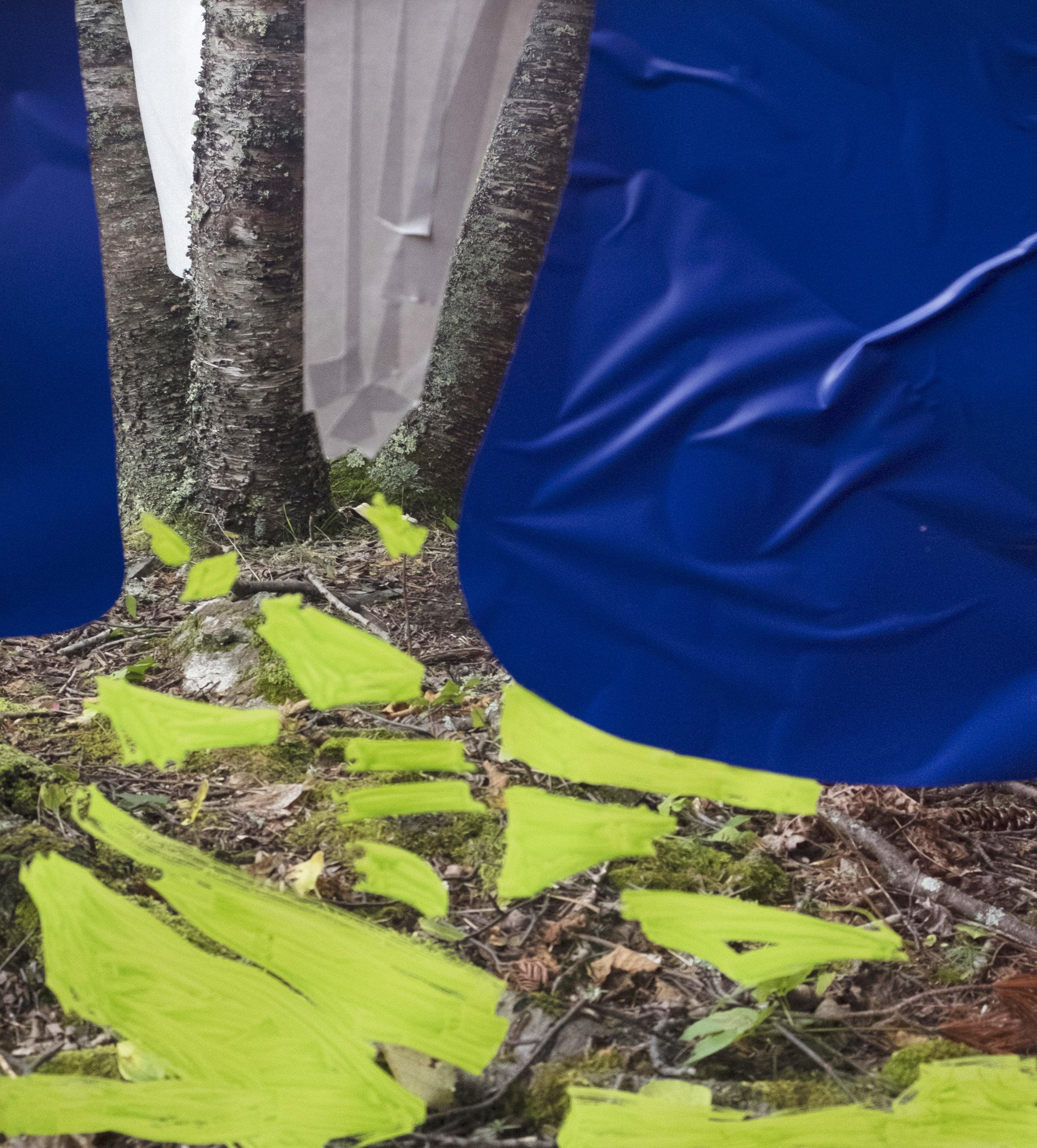 09.06.16 Tofte Lake (Triplet Trees)
