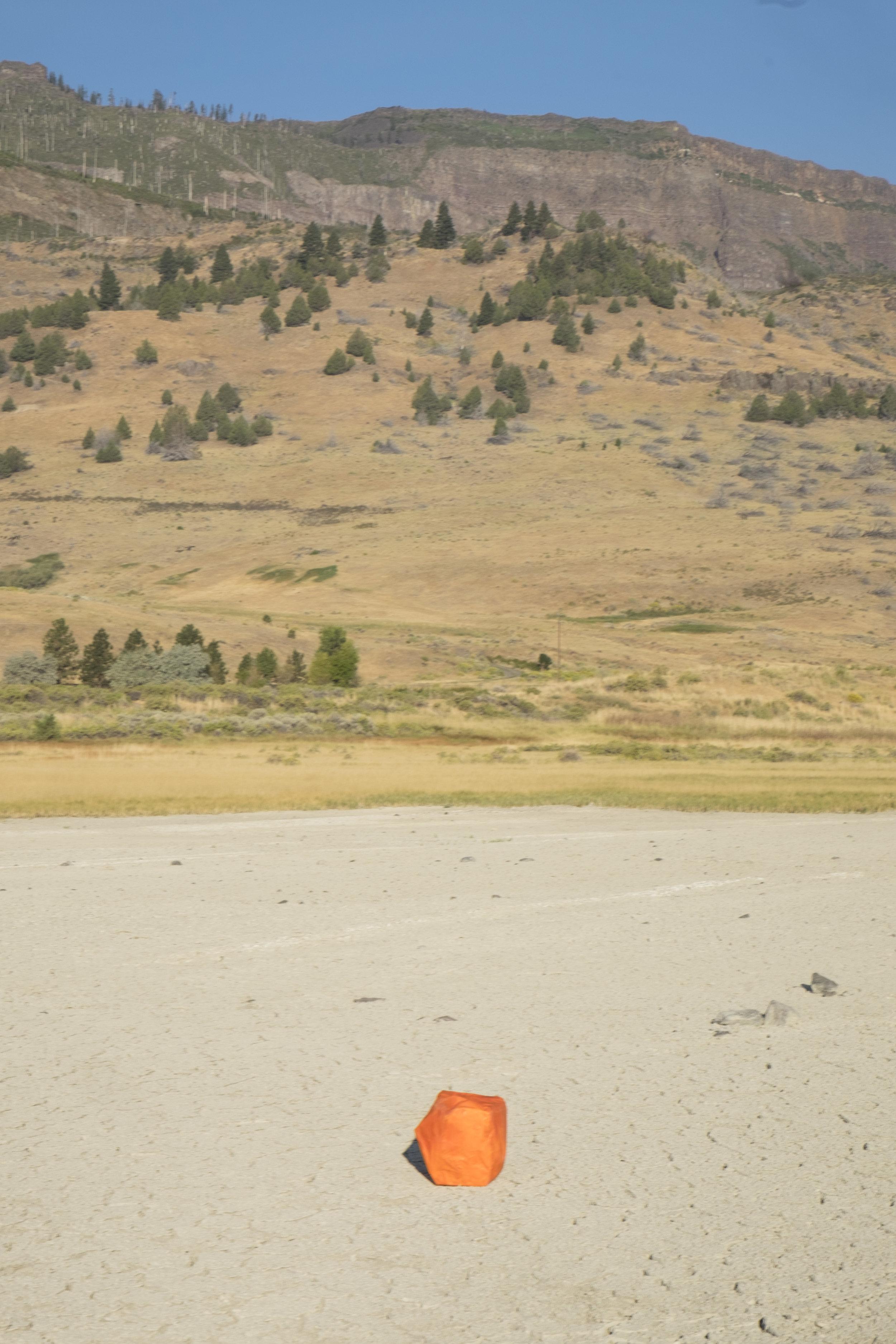 Rock Portrait (Orange with Mountains)
