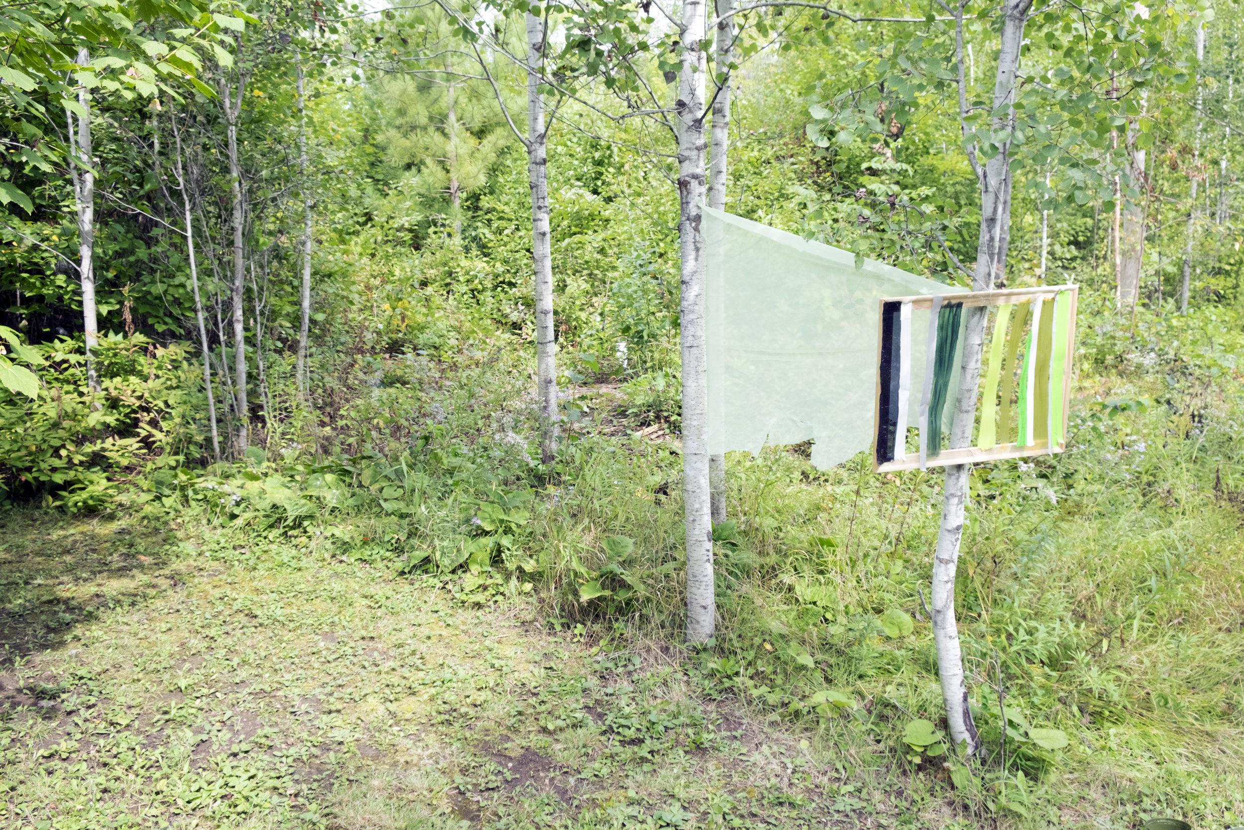 09.07.16 Reveal: Tofte Lake (Birch)