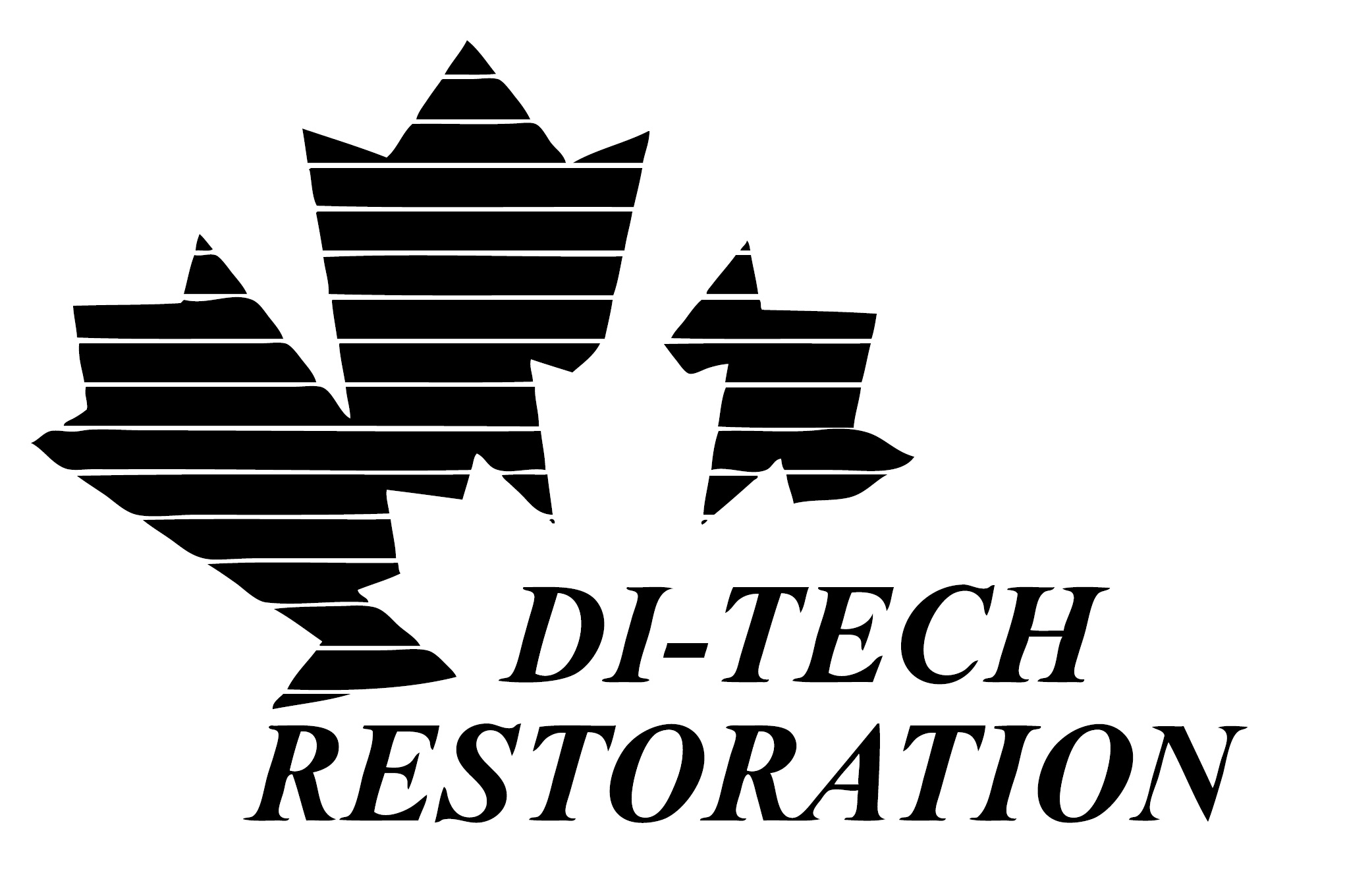 Di Tech Restoration.png