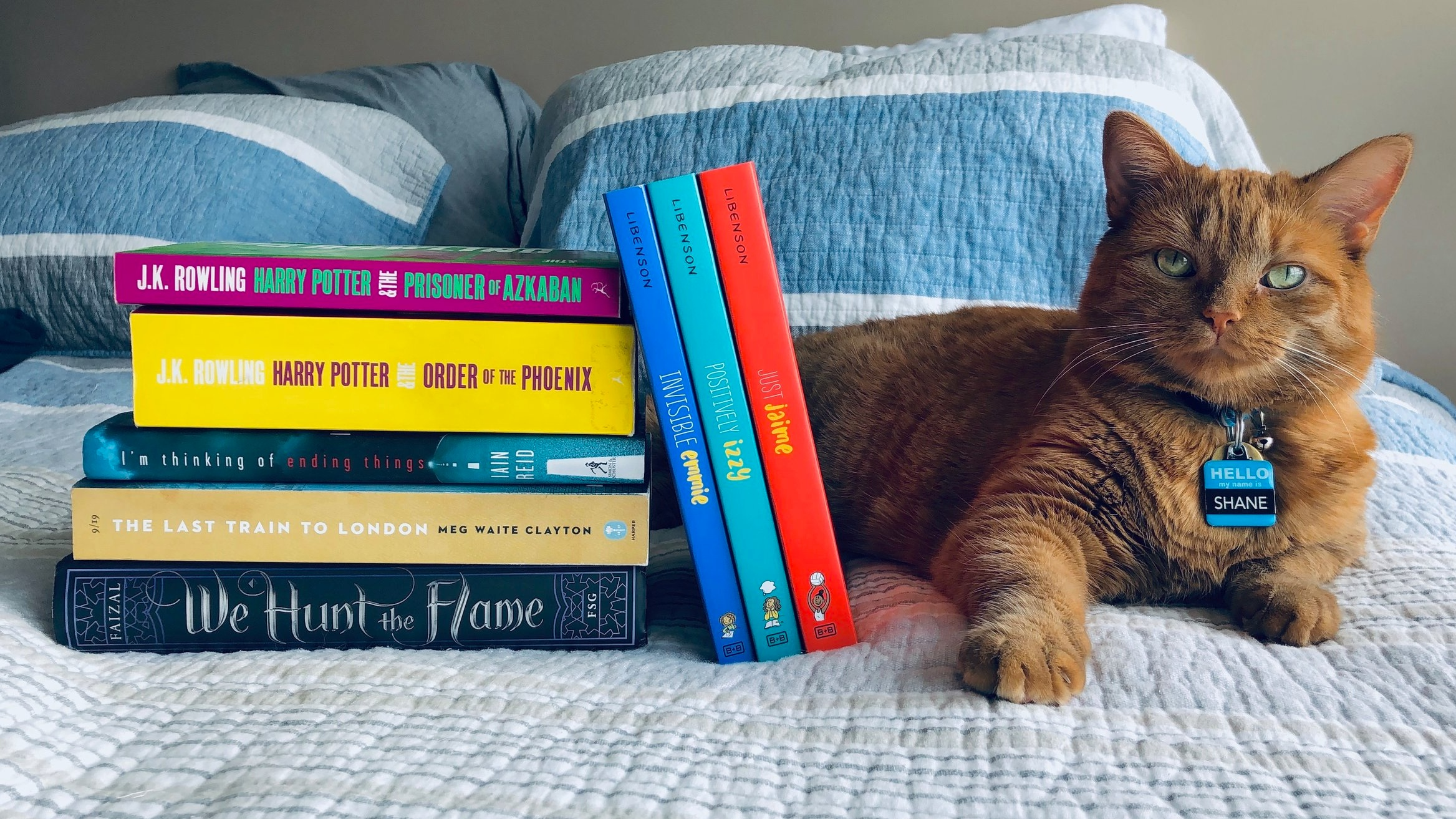 Monthly reading wrap-up: Harry Potter and The Prisoner of Azkaban, The Order of the Phoenix, I'm Thinking of Ending Things, Last Train to London, We Hunt the Flame, Invisible Emmie, Positively Izzy, and Just Jaime