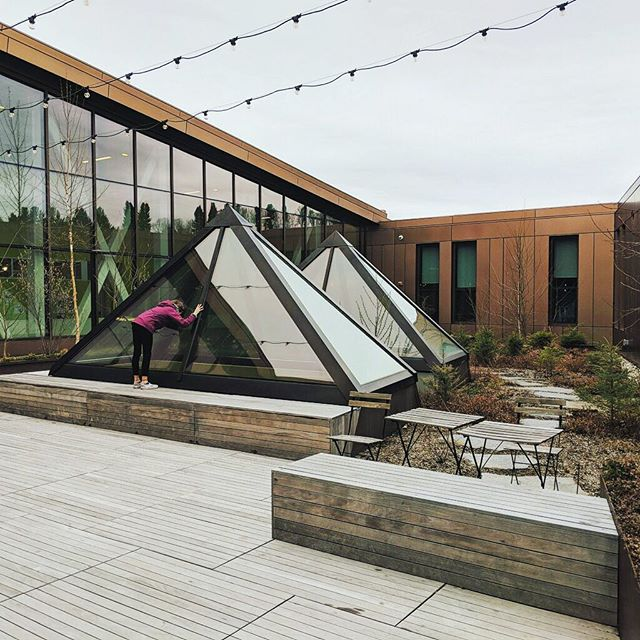 It's always fun to have a different perspective! Exploring the roof garden at the @umasslarp Design Building...