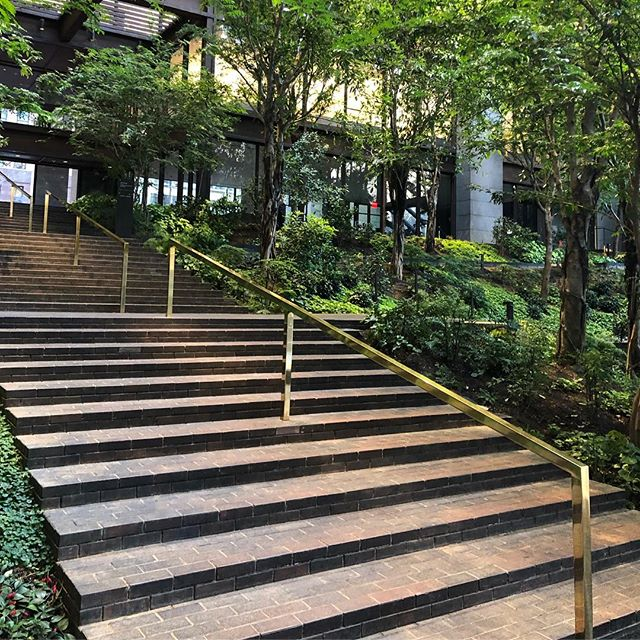 We were thrilled to visit this beautiful #DanKiley multi-tiered atrium garden at the @fordfoundation while seeing the @springbreakartshow! Renovated by the talented @rjistudio, it's wonderful to see it looking so lush and peaceful.