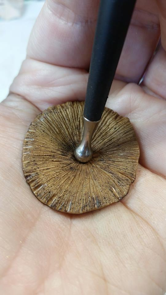 Mushroom Cap 1n.jpg