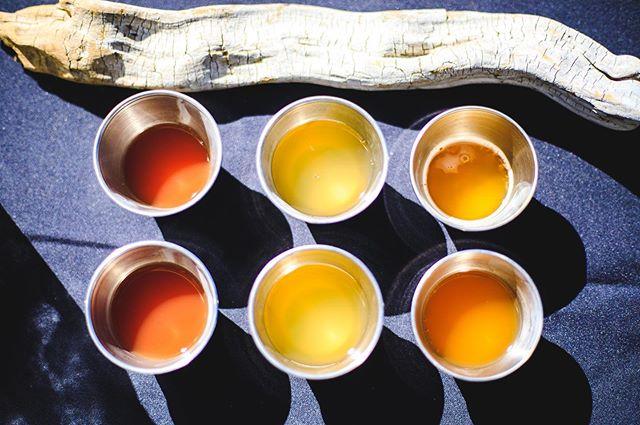 Who needs a little color in their life? From left to right  1.) Togwotea (black tea) ~~~~hibiscus, ginger, rose hips  2.) Jazz-Mon (jasmine tea) ~~~~lemon balm, lemongrass,  lemon verbena  3.) G'Day Mate (Yerba mate tea) ~~~~mint, holy basil, lemongrass