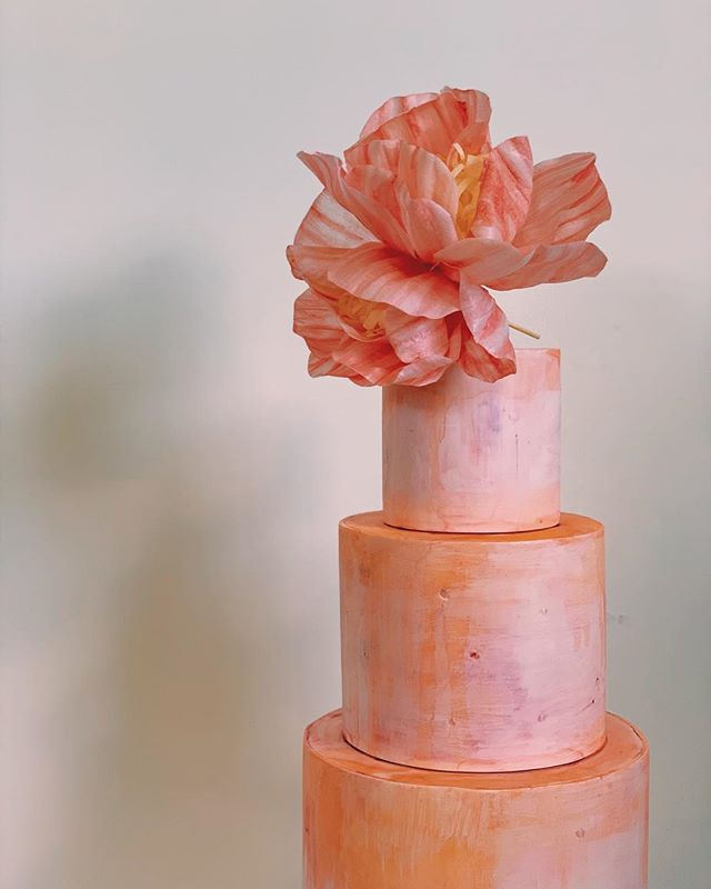 Pink tone and shadow #colorstudy #pink #salmon #coral #paintedcake #waferpaper #handmade #cake