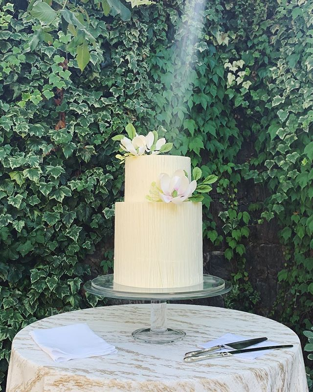 Let there be cake! *see heavenly beam of sunlight on this wedding cake.. with the divine @amynicholsse @nataliebdesigns @paulaleduc @annadelestatewinery @birdsofafeatherevents
