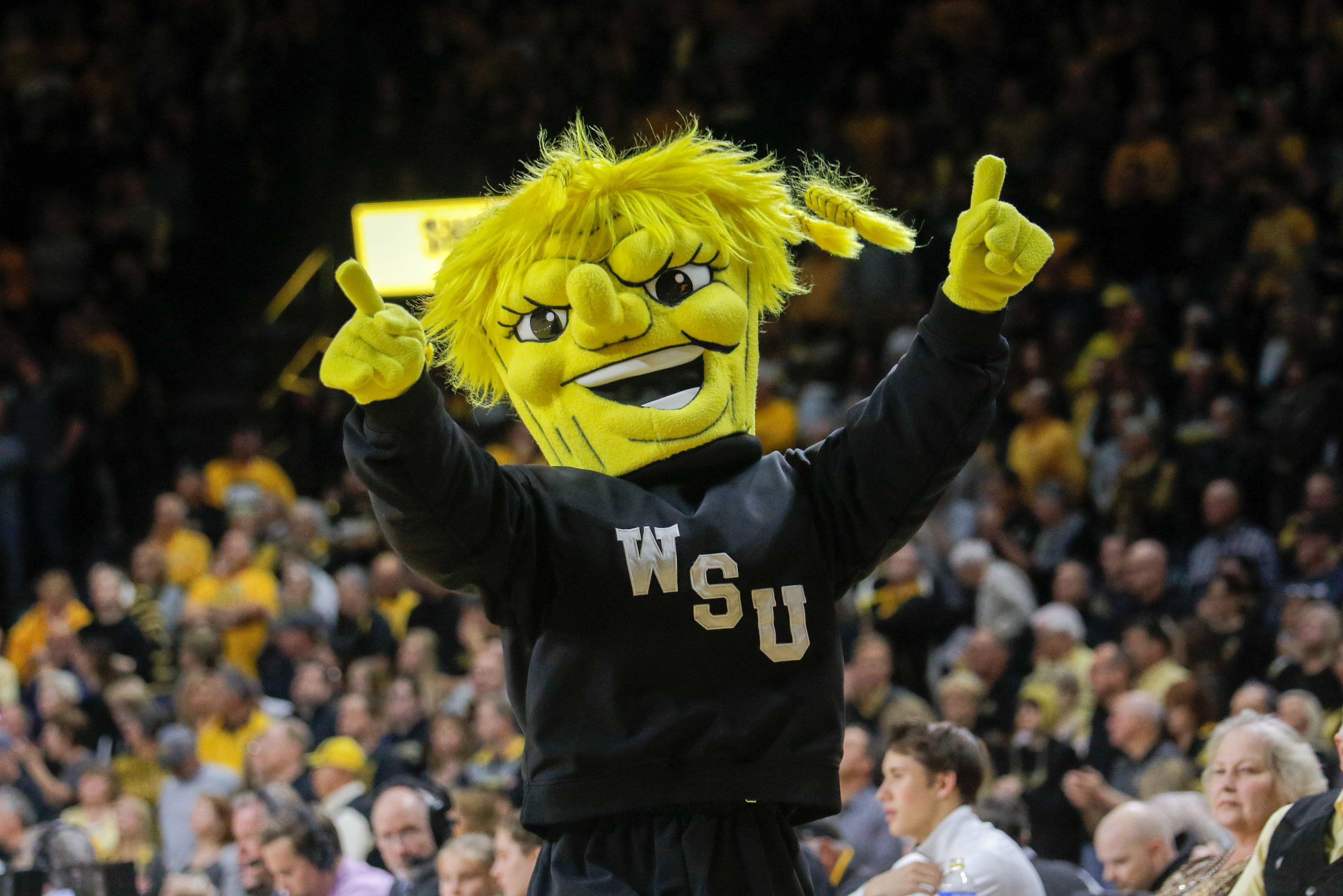 Wichita State's mascot runs across the court during a game on November 13, 2017.