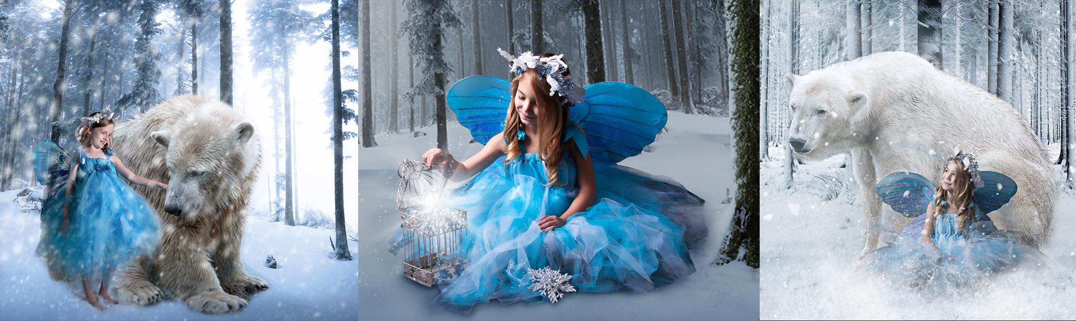Winter fairy banner.jpg