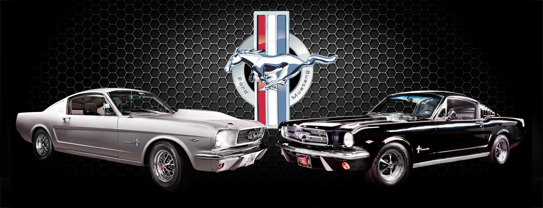 Mustang 5ft composite.jpg