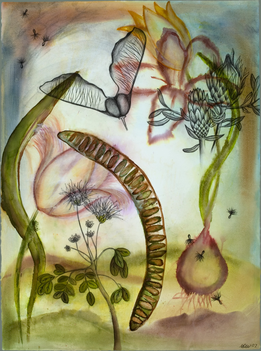 Garden Variety Watercolor, ink, and charcoal on paper, 22 x 30 inches