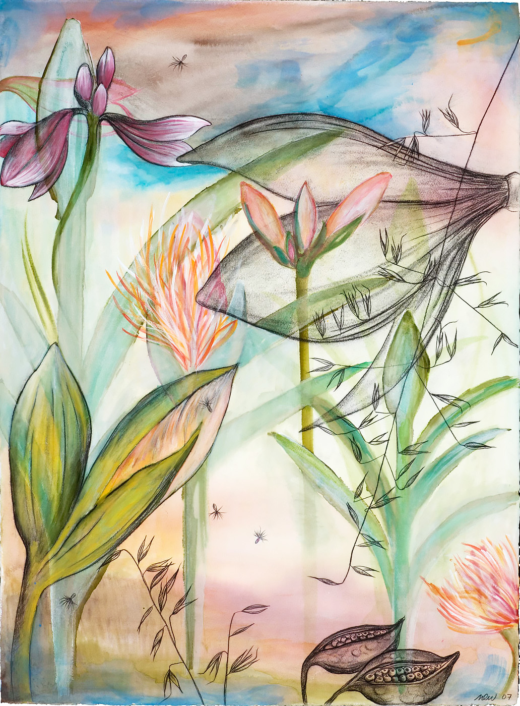 Garden Variety #2 Watercolor, ink, and charcoal on paper, 22 x 30 inches
