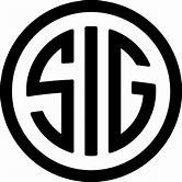 SIG logo.jpg