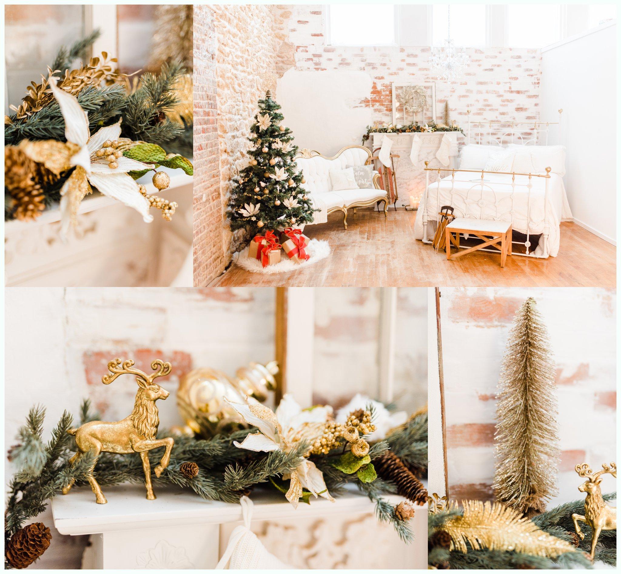 Studio Christmas Minis_2782.jpg