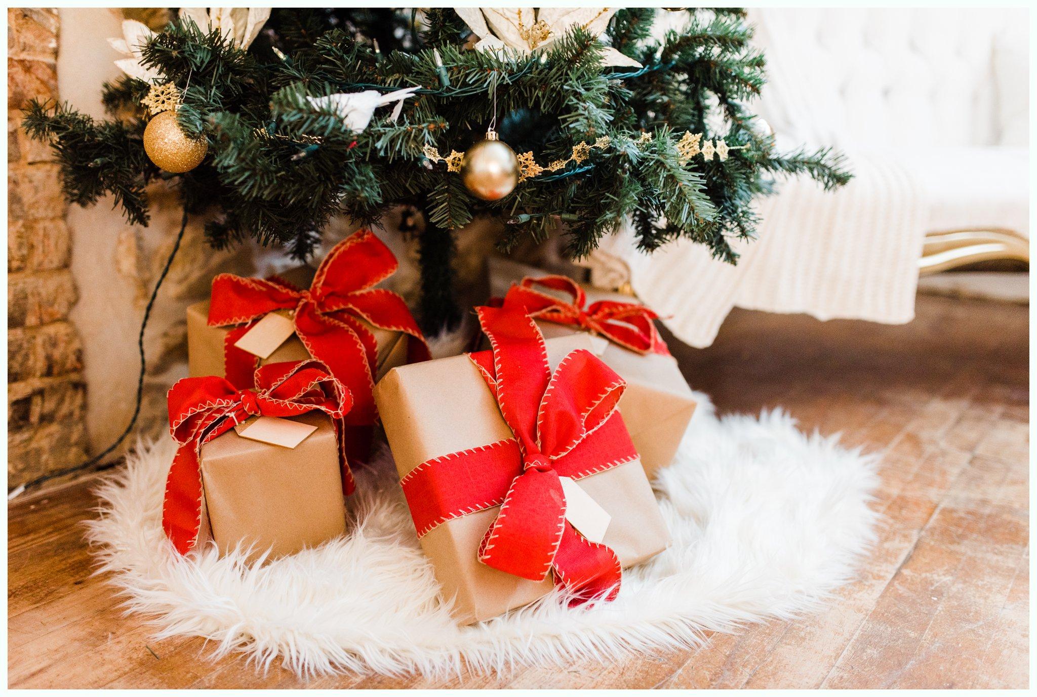 Studio Christmas Minis_2800.jpg