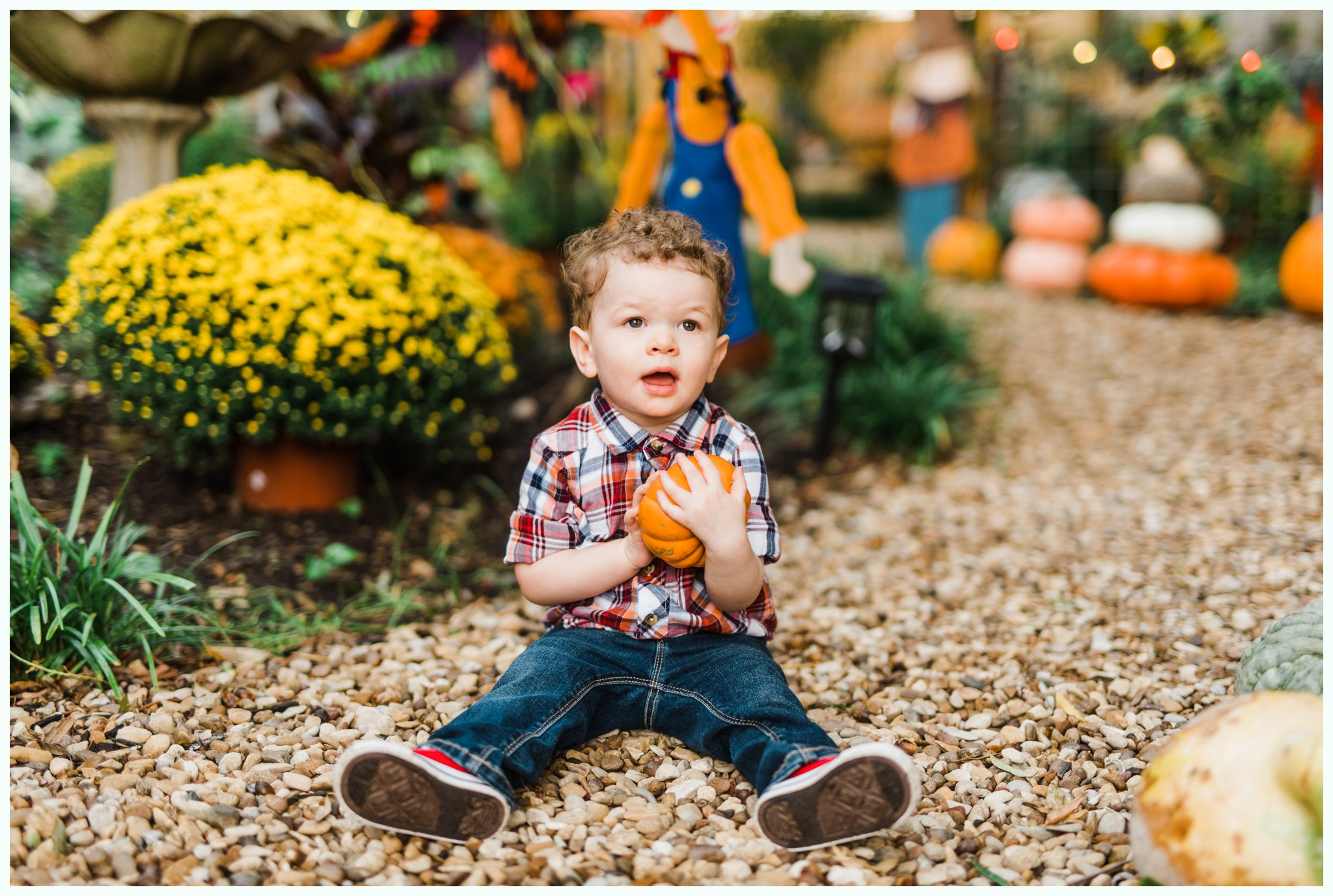 Pumpkin Patch Session_2954.jpg