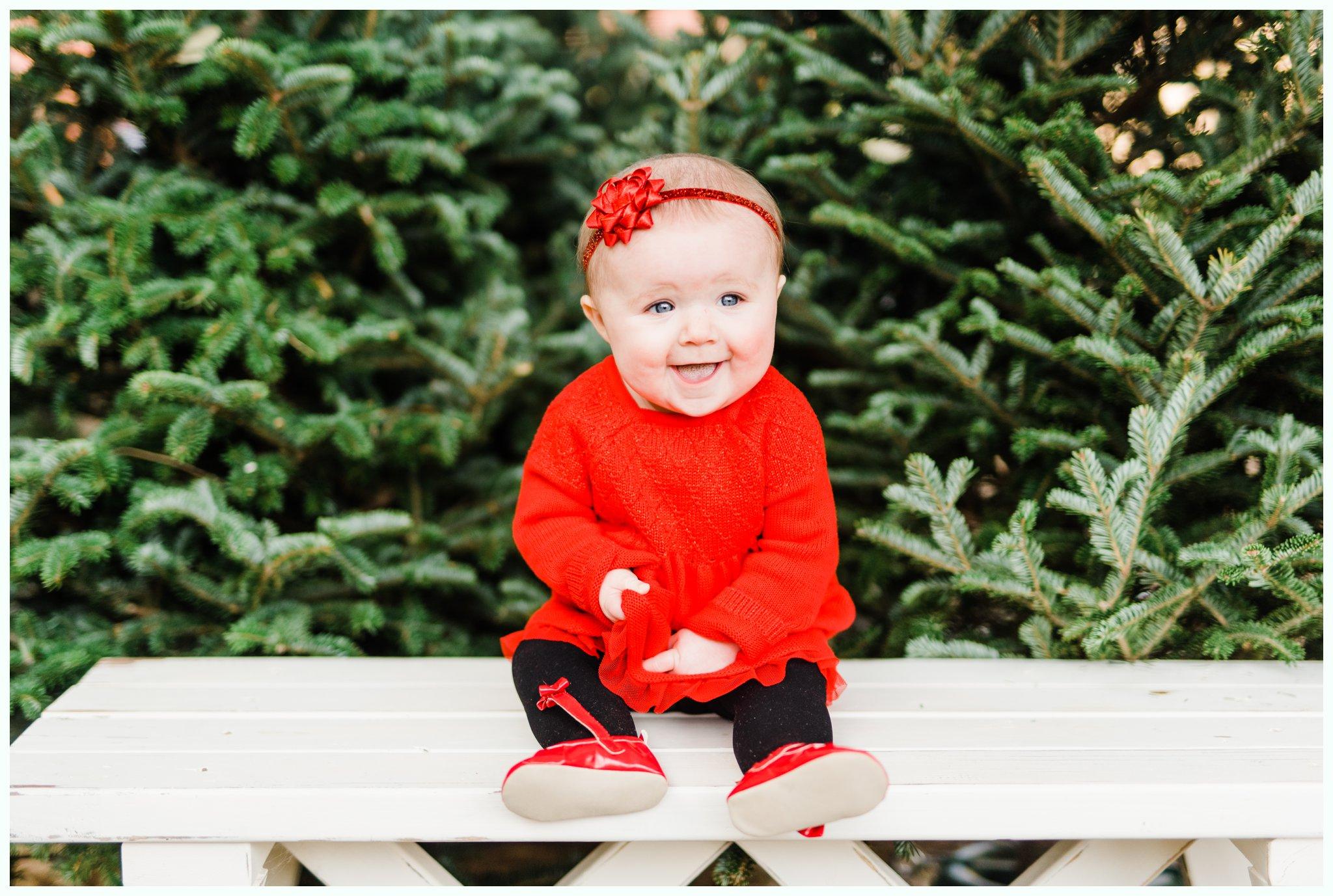 Christmas Tree Minis_3678.jpg
