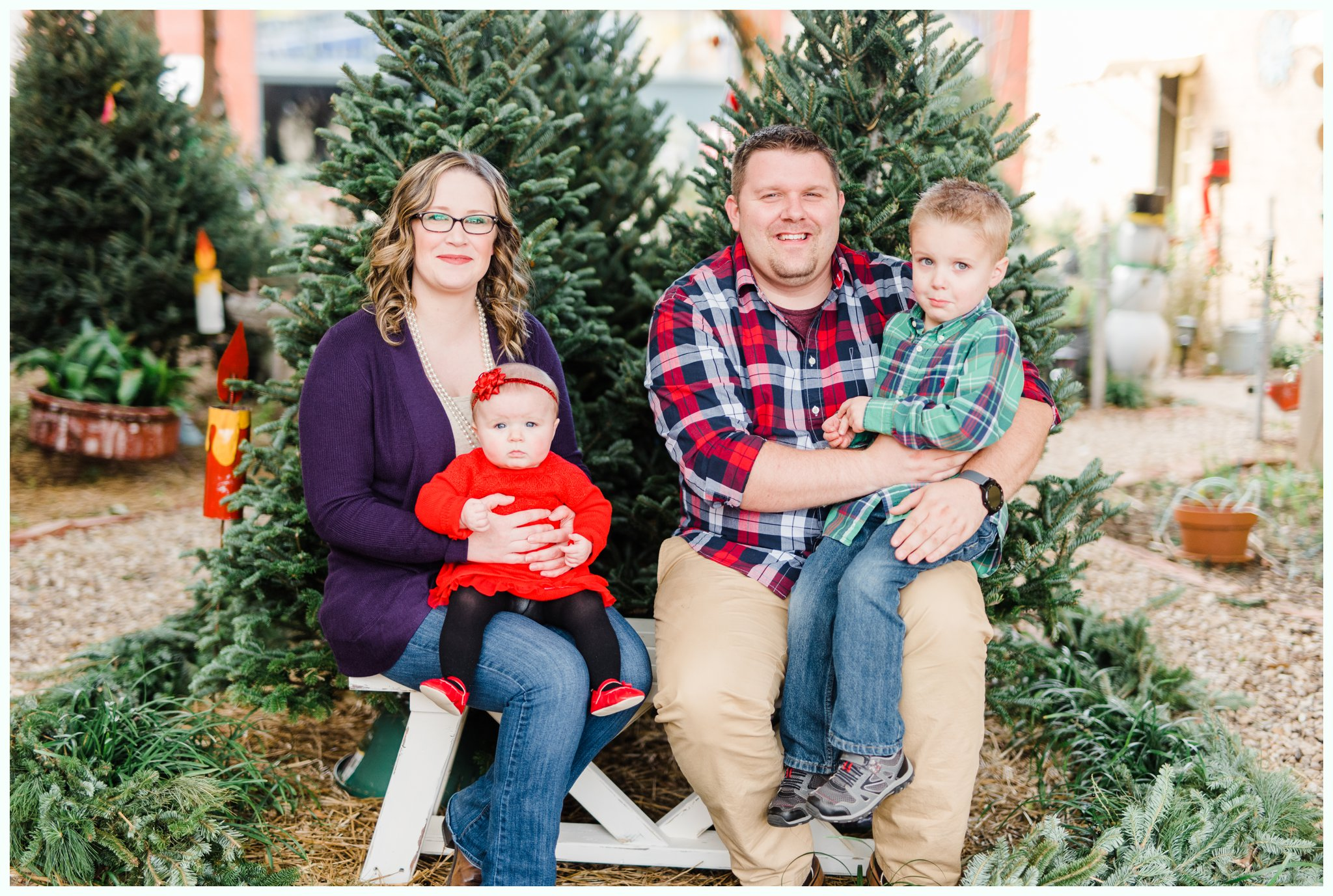Christmas Tree Minis_3680.jpg