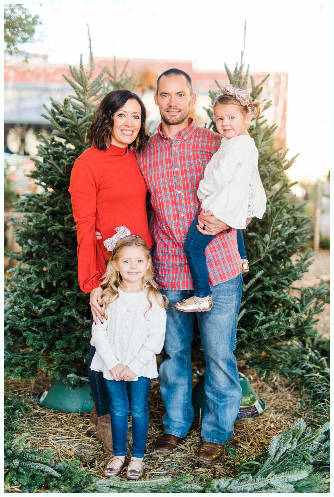 Christmas Tree Minis_3690.jpg