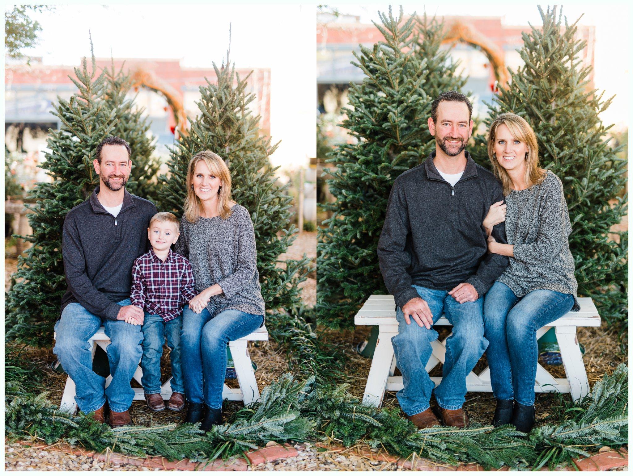 Christmas Tree Minis_3691.jpg
