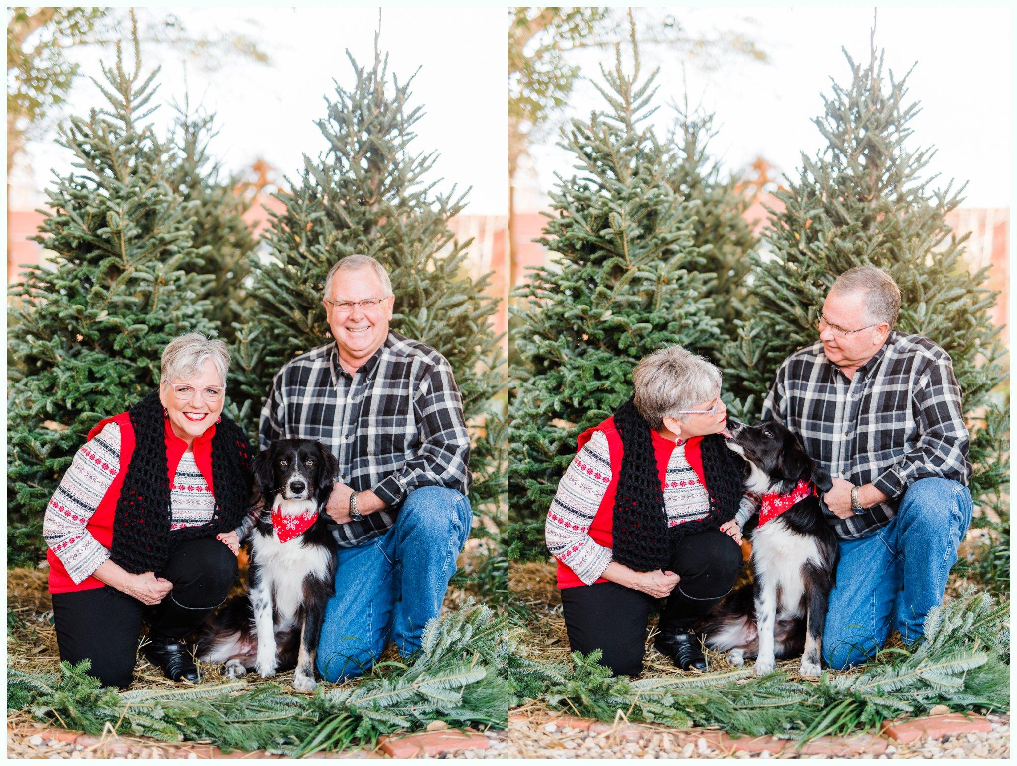 Christmas Tree Minis_3695.jpg