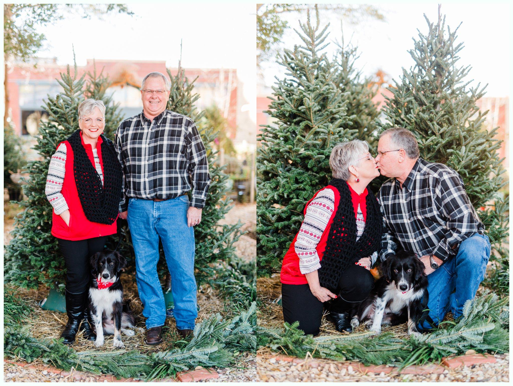 Christmas Tree Minis_3696.jpg