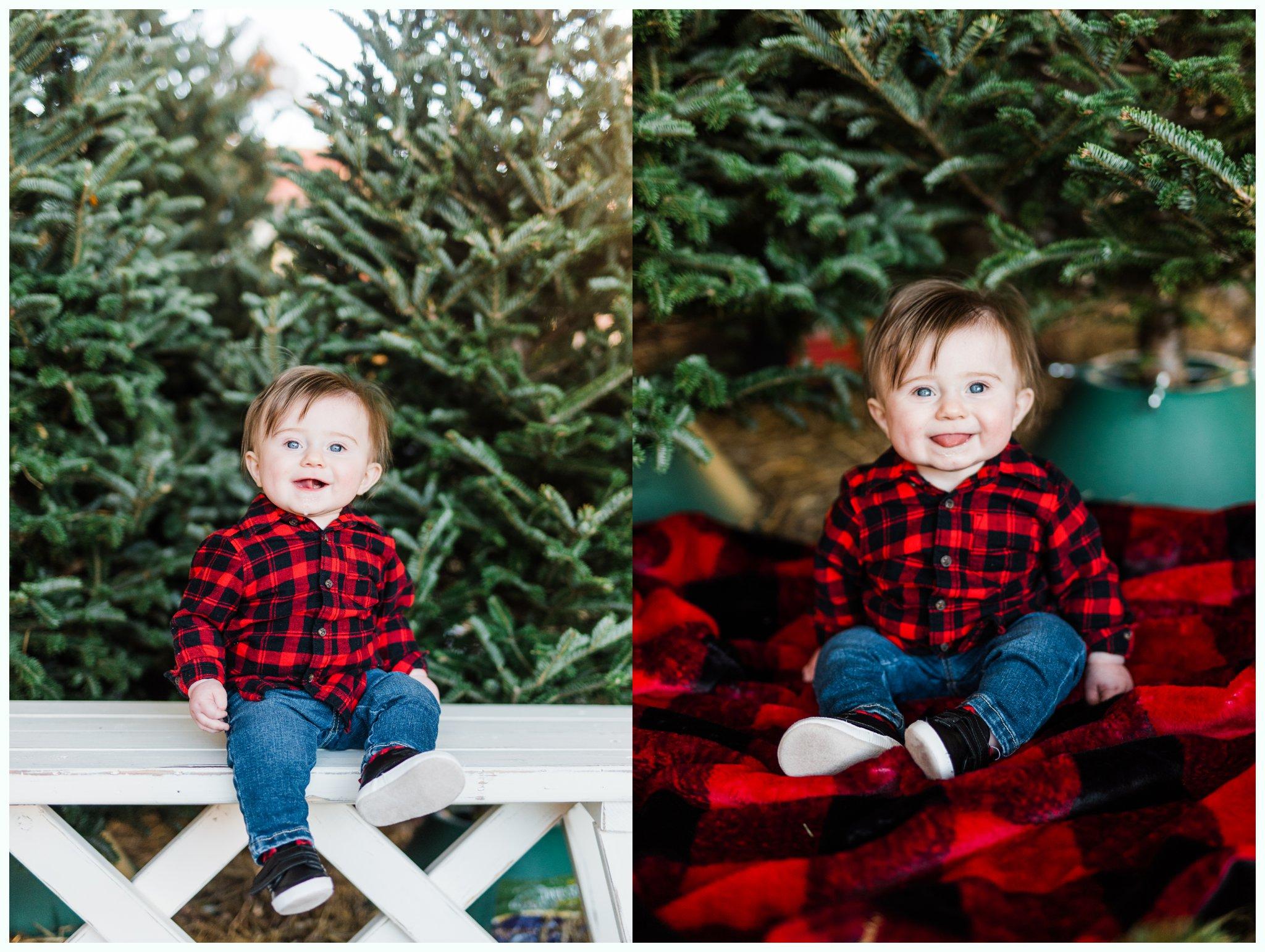 Christmas Tree Minis_3700.jpg