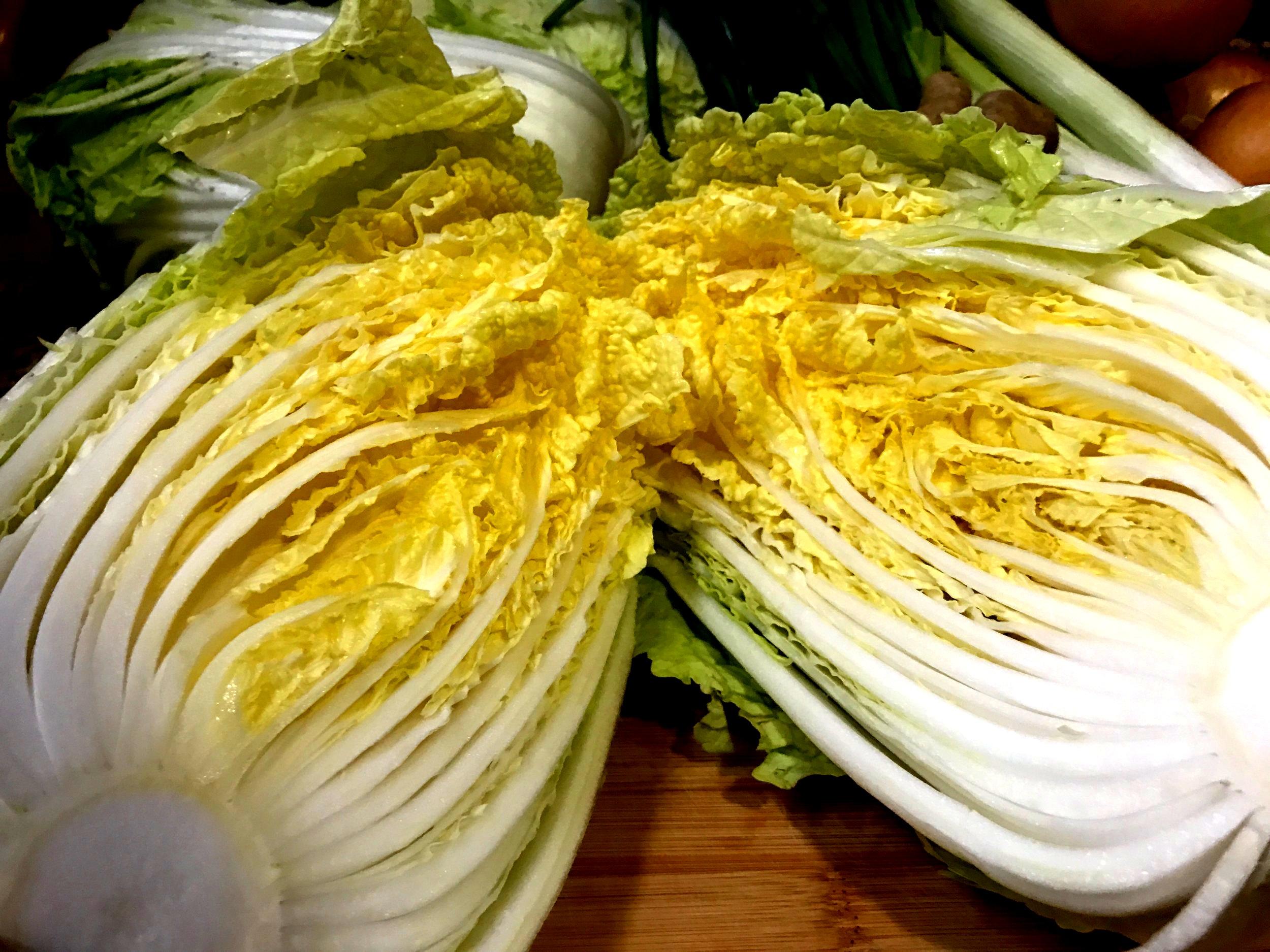 Baechu (Napa Cabbage)