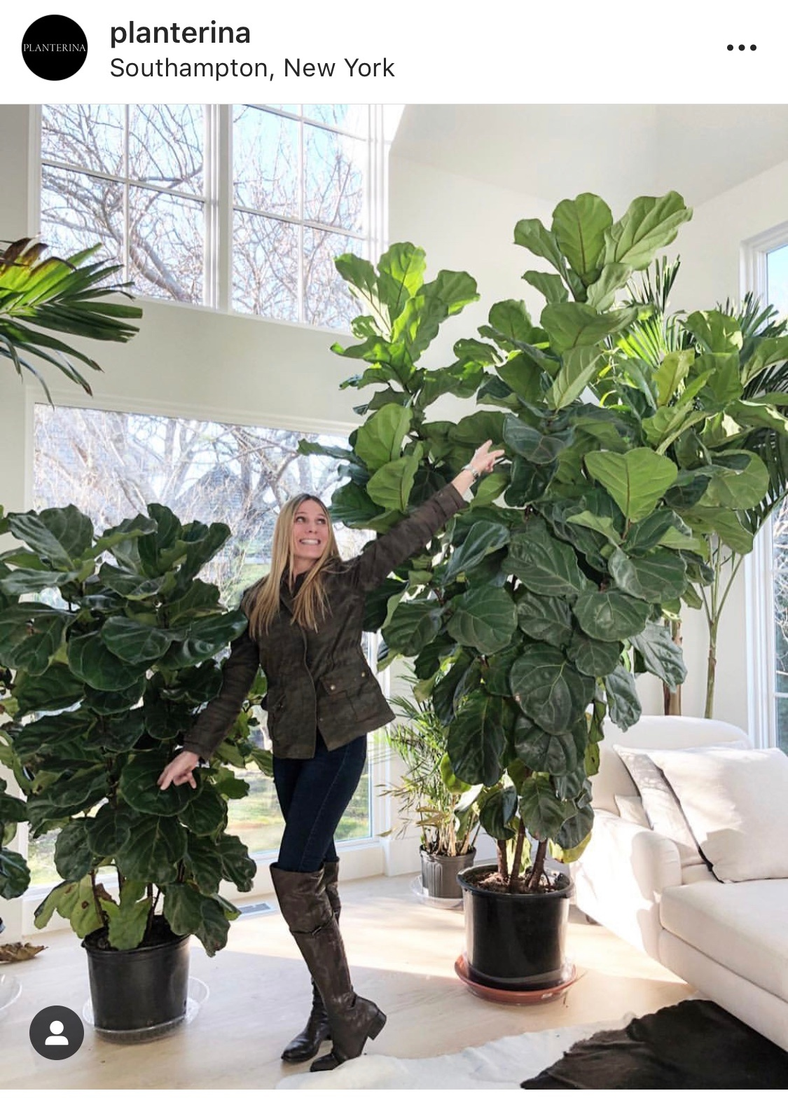 Planterina - Amanda is a plant styling genius, and she is incredibly knowledgeable about plant care. She is the definition of #plantgoals and she basically lives in a greenhouse. Watch her video on plant watering ASAP.@planterina